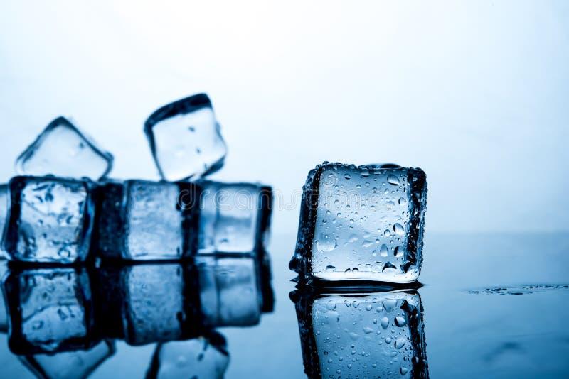 Кубы льда помещены красиво Еда и drin индиго цвета льда стоковые фото