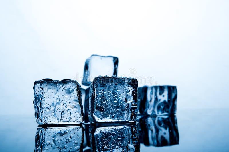 Кубы льда помещены красиво Еда и drin индиго цвета льда стоковое фото rf
