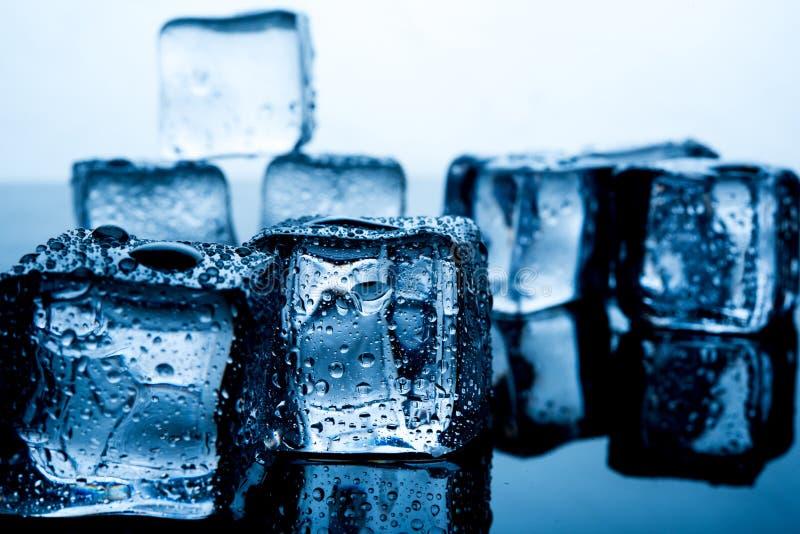 Кубы льда помещены красиво Еда и drin индиго цвета льда стоковое фото