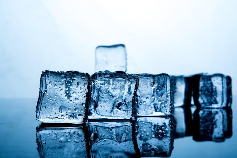 Кубы льда помещены красиво Еда и drin индиго цвета льда стоковые фотографии rf