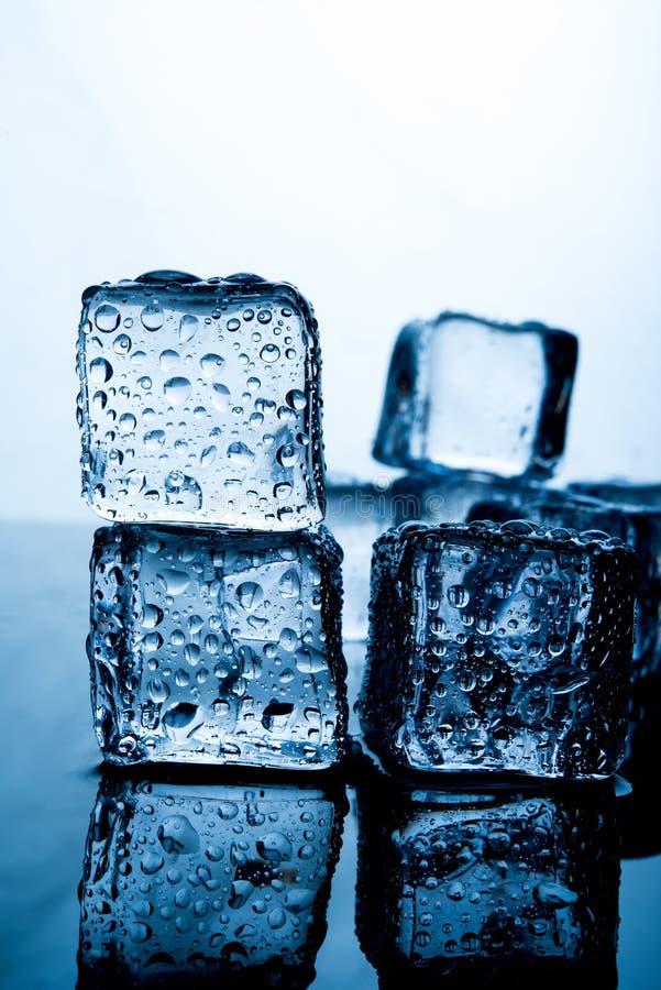 Кубы льда помещены красиво Еда и drin индиго цвета льда стоковая фотография rf
