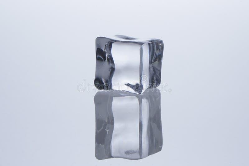 Кубы льда расплавили стоковые изображения rf