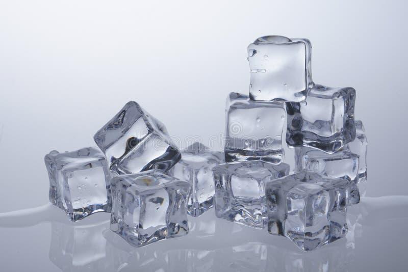 Кубы льда расплавили стоковые фото