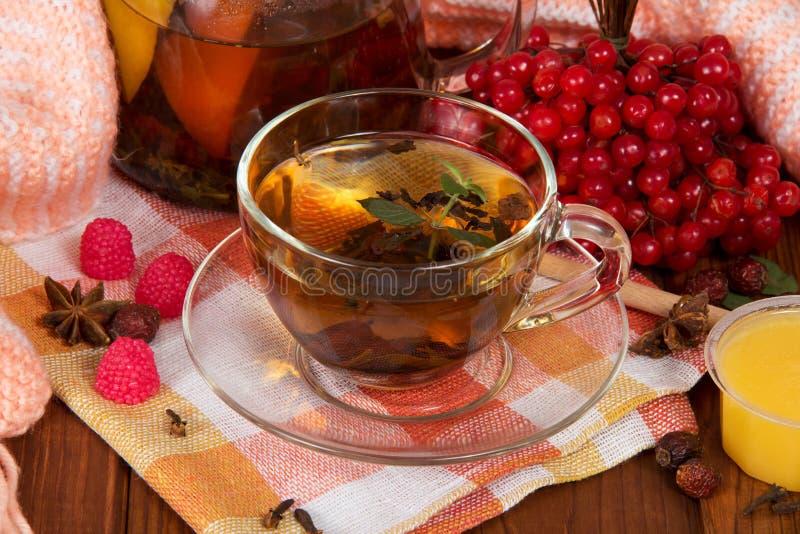 Кувшин и чашка горячего питья плодоовощ на салфетке, пригорошни калины и меда, на таблице стоковое фото