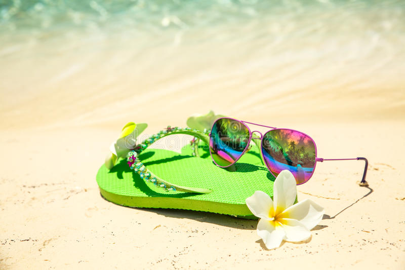 Кувырки зеленого цвета тропического concept†каникул», цветок frangipani стоковая фотография