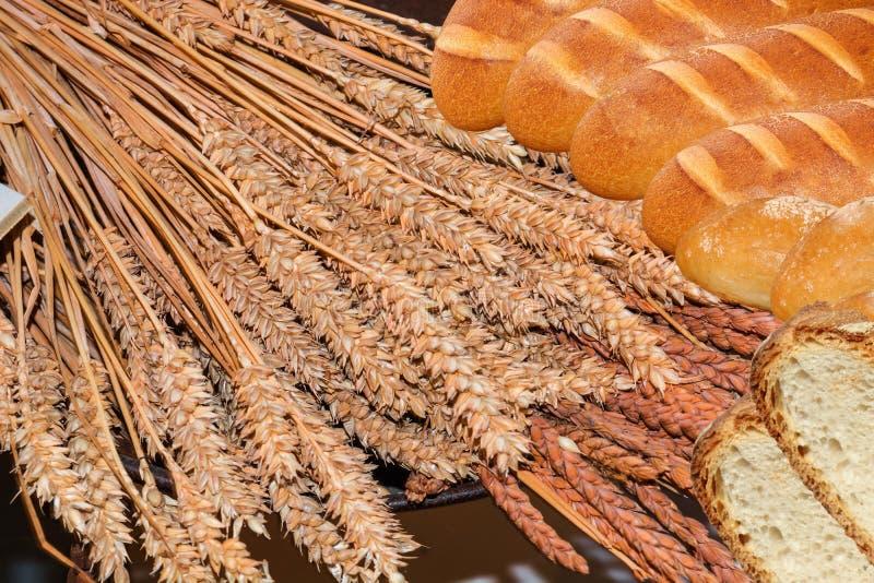 Кукурузные початки пука стоковая фотография rf