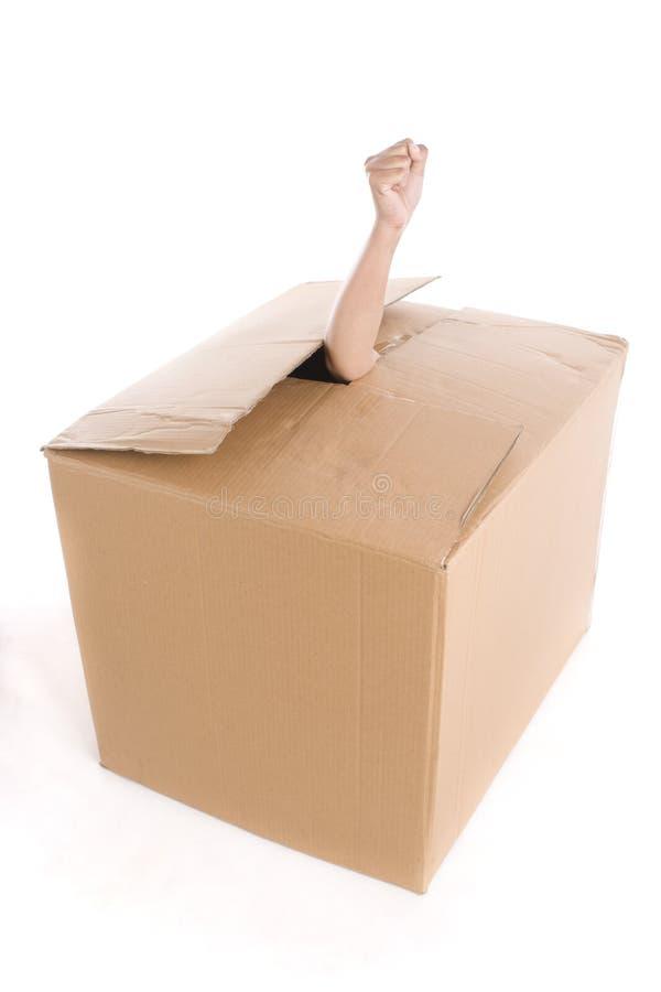 тогда картинка для коробки внутрь присуждаются