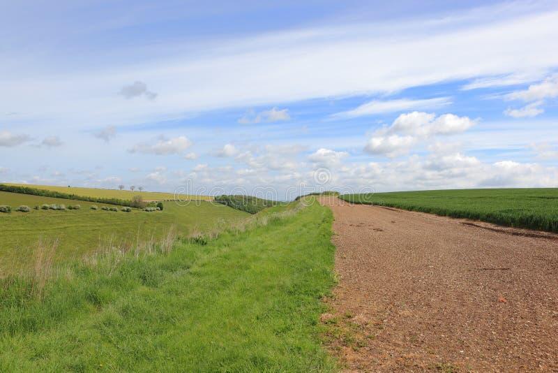 Культивируемая прокладка консервации над сценарной долиной в сценарном обрабатывая землю ландшафте в весеннем времени стоковая фотография rf