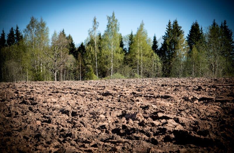 Культивируемое аграрное поле, подготовительные работы весны для засевать и засаживать стоковые фото