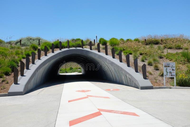 Культивируйте подземный переход позволяет пешеходам и велосипедистам путешествовать unimpeeded в зоне открытого пространства Bosq стоковые фотографии rf