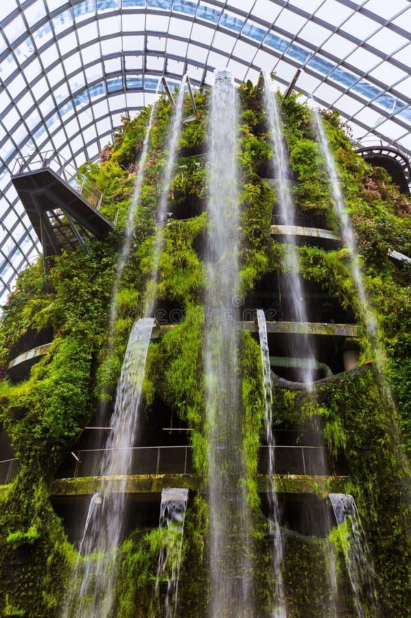 Купол леса облака на садах заливом в Сингапуре стоковые фото