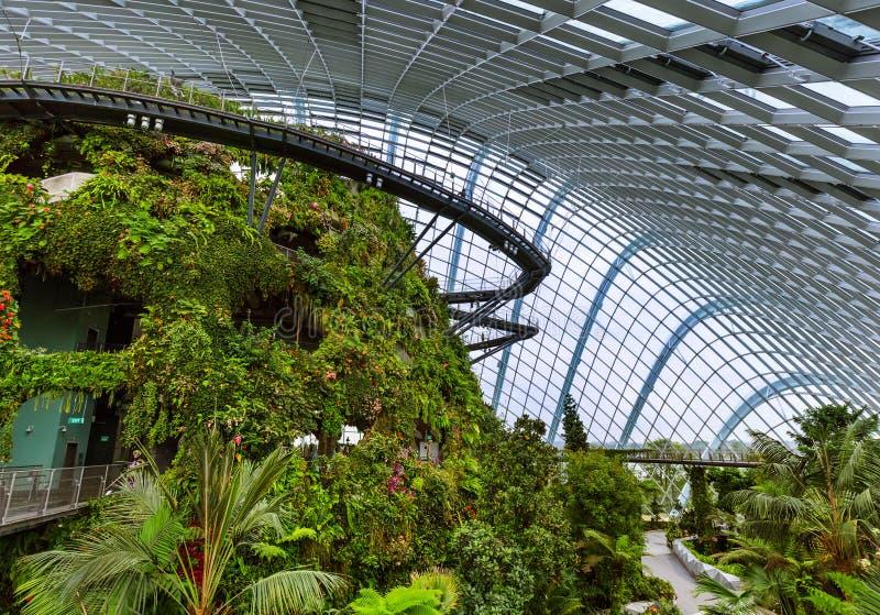 Купол леса облака на садах заливом в Сингапуре стоковое фото