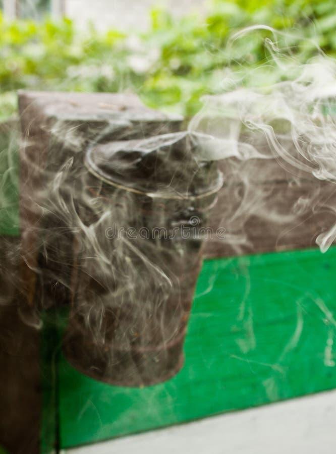 Курильщица пчелы стоковая фотография rf