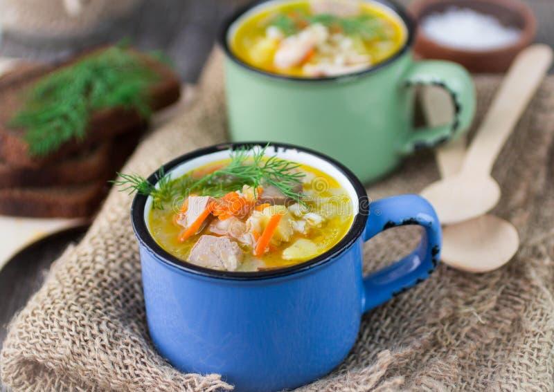 Куриный суп с ячменем и овощами стоковая фотография rf