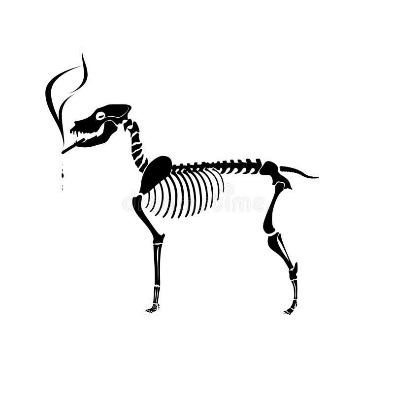 курить скелета собаки иллюстрация вектора