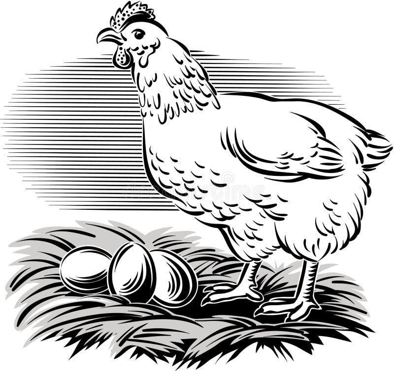 Курица в гнезде иллюстрация штока