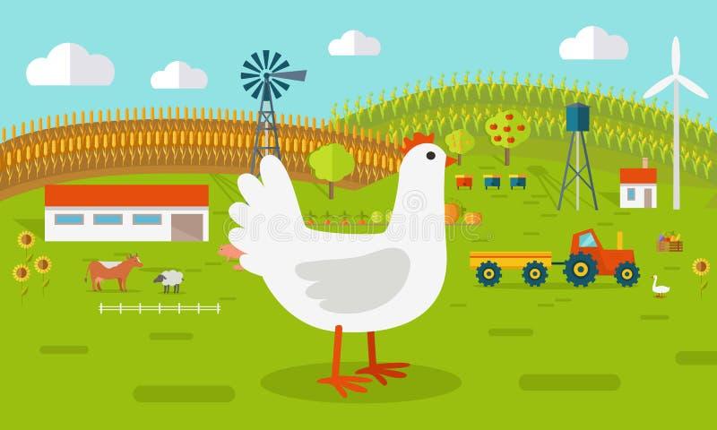 Курица на иллюстрации концепции Farmyard бесплатная иллюстрация