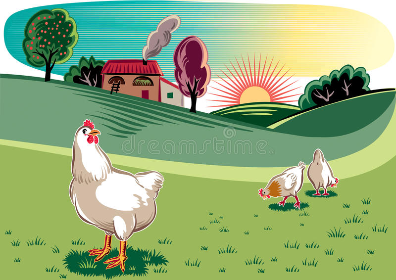 Курицы в луге иллюстрация вектора