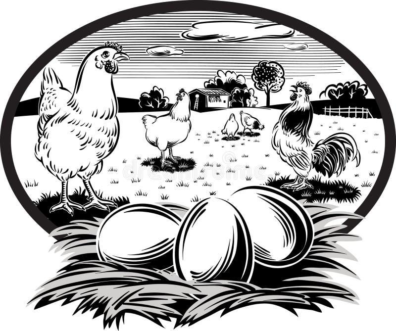 курицы и гнездо с яичками иллюстрация штока