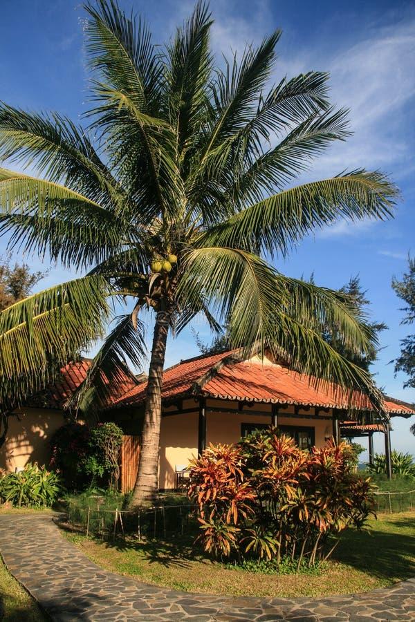Download Курорт в Вьетнаме стоковое фото. изображение насчитывающей вал - 40588940