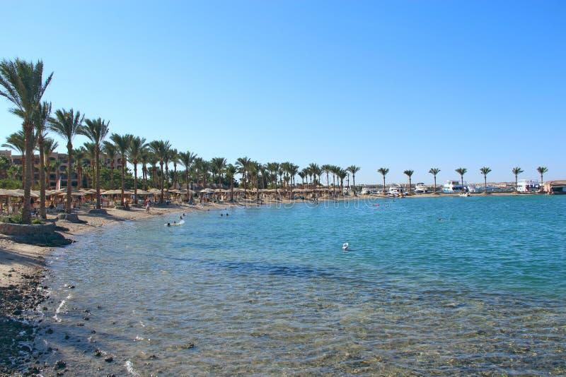 курорт Египета тропический Пляж песка моря пальм Остатки людей на пляже стоковая фотография rf