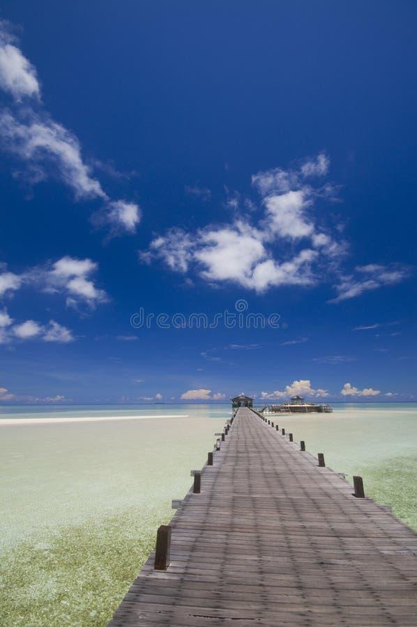 курорт острова к тропической дорожке стоковые изображения rf