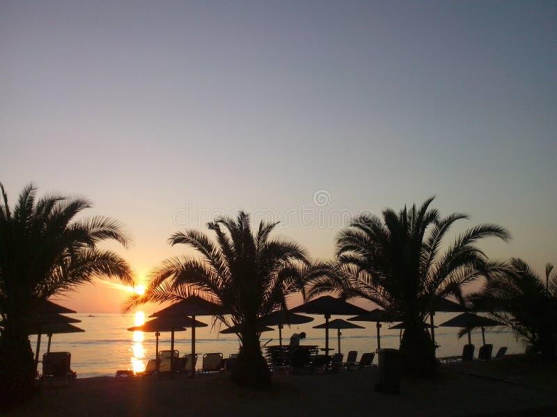 курорт portocarras гостиницы пальм пляжа захода солнца стоковые изображения rf