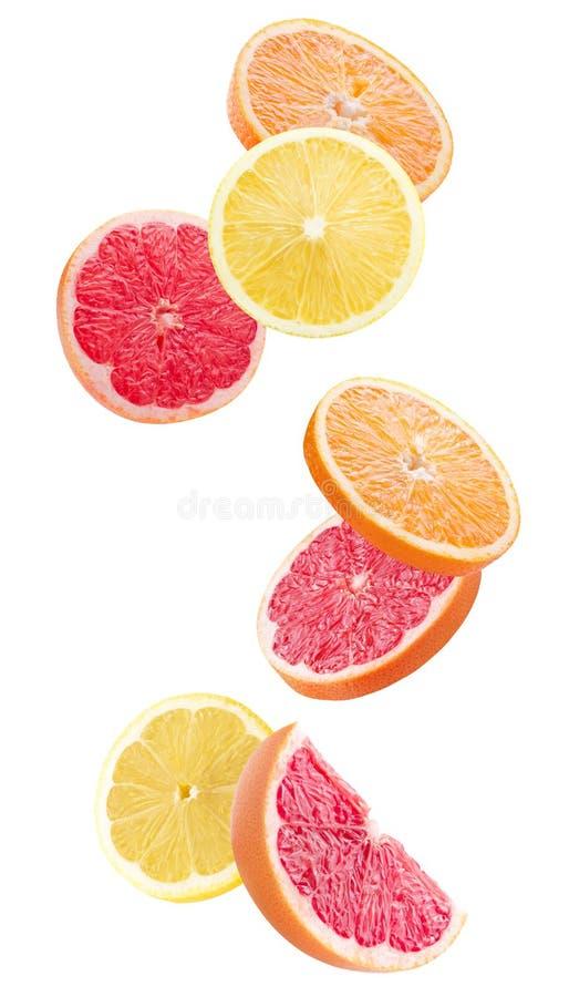 Куски апельсина, лимона и грейпфрута изолированные на белом backgrou стоковое изображение rf