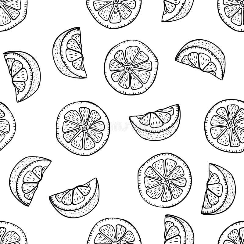 Куски лимона чертежа руки в стиле doodle на белой предпосылке Чертеж doodle картины лимона безшовный Зрелые плоды сада стоковые фотографии rf