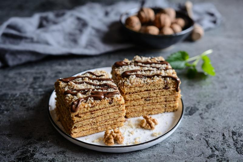 Куски традиционного торта Marlenka стоковая фотография