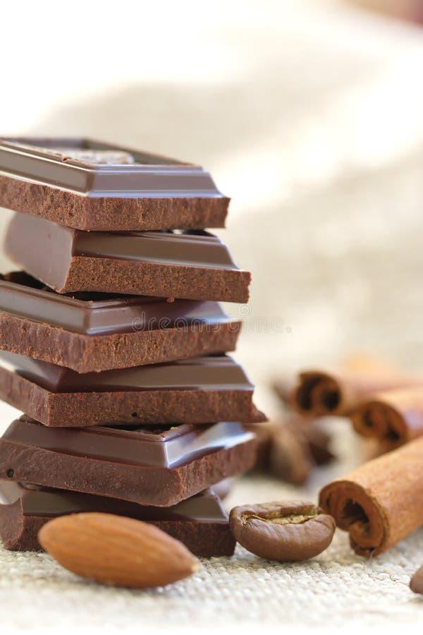 Куски шоколада и специй стоковое фото