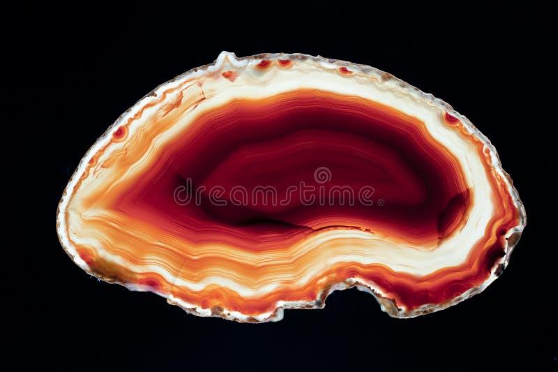 Кусок агата стоковое изображение