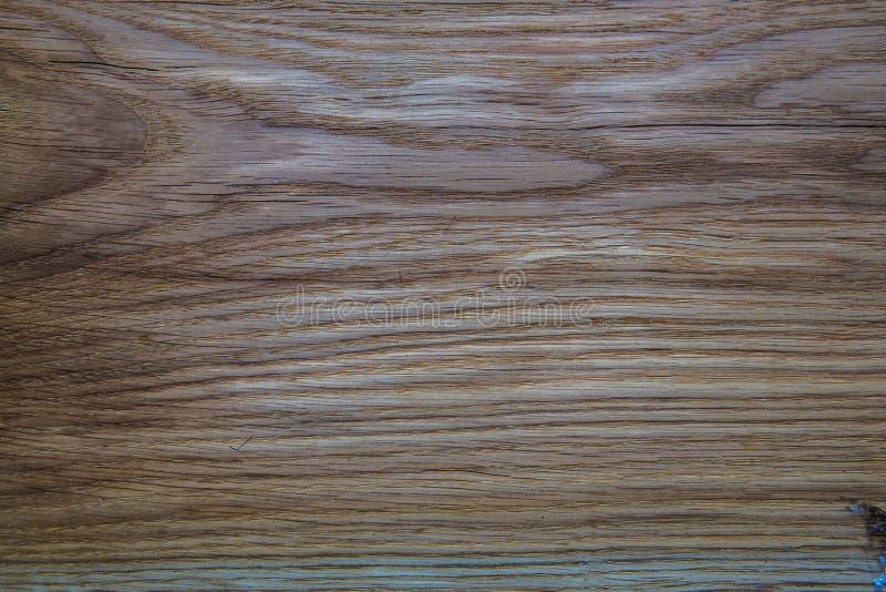 Кусок от дерева стоковые изображения