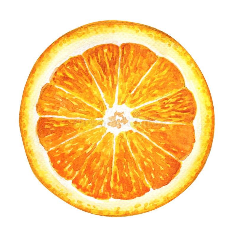 Кусок свежего апельсина изолированный на белой предпосылке стоковая фотография