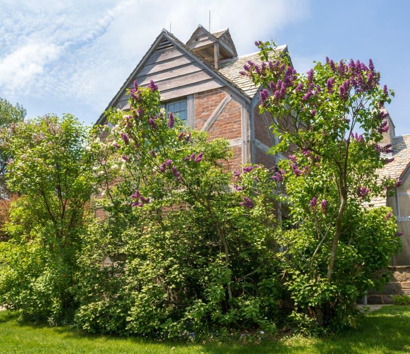 Кусты сирени обрамляют структуру стиля возрождения Tudor на основаниях парка штата Topsmead стоковая фотография rf