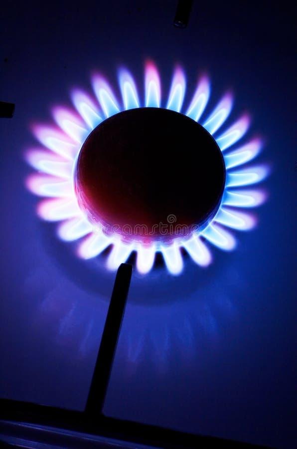 кухня газа плитаа стоковые изображения rf