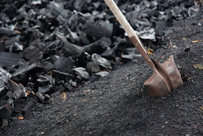 Куча готового черного угля и лопаткоулавливателя стоковые изображения rf