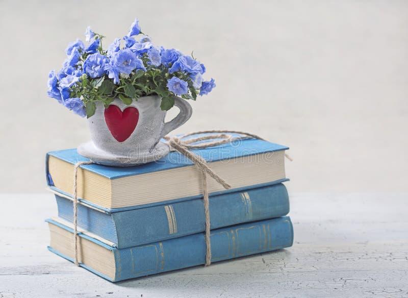 куча голубых книг стоковая фотография