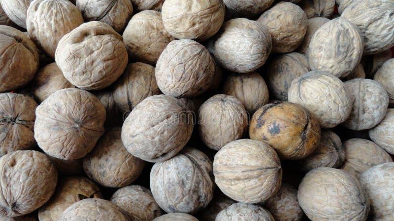 Куча грецких орехов с коркой Большое количество необработанного грецкого ореха стоковые фото
