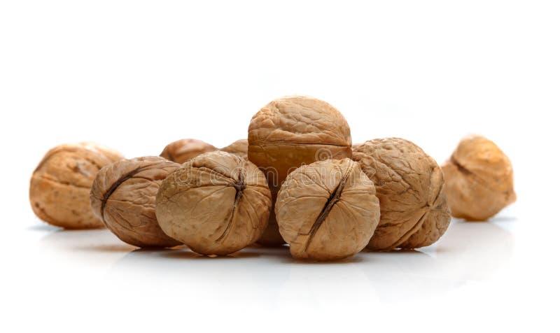 Куча грецких орехов стоковые изображения rf