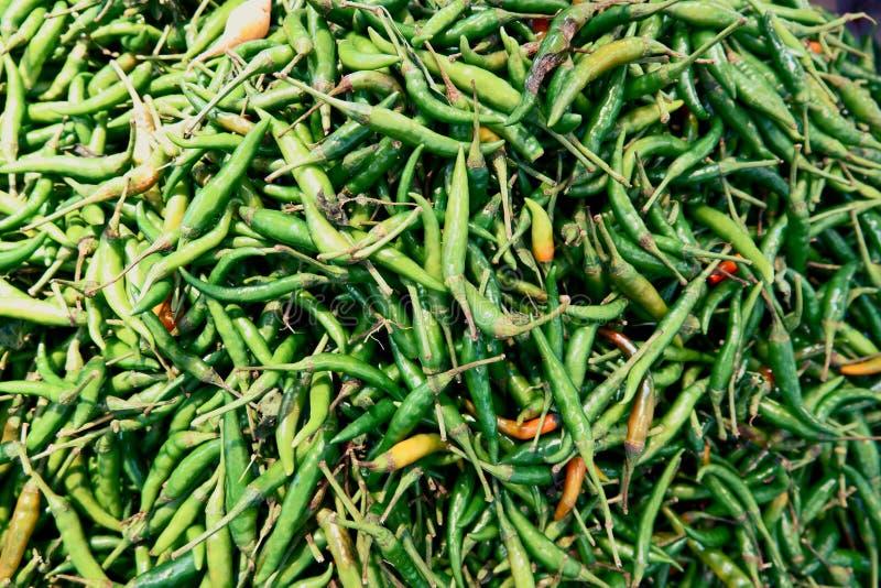 Куча зеленого свежего Chili стоковые изображения