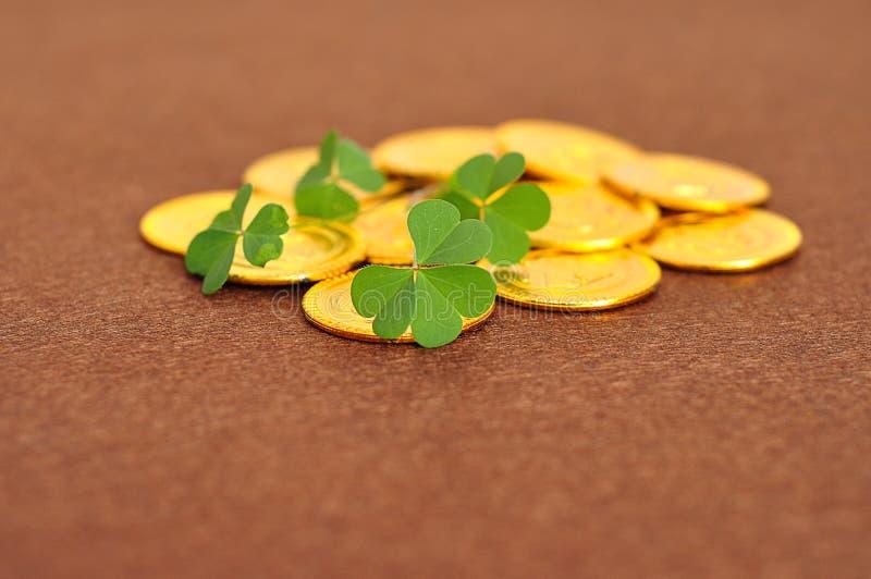 Куча золотых монеток показанных с пуком клеверов стоковое изображение