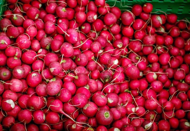 Куча зрелой красной редиски на рынке овоща стоковое фото