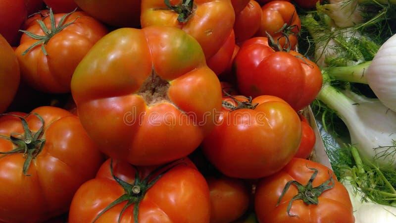 Куча или стог свежих томатов стоковые фотографии rf