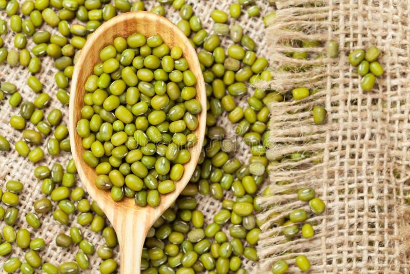 Куча органических сырцовых зеленых чечевиц фасоли mung внутри стоковые фотографии rf