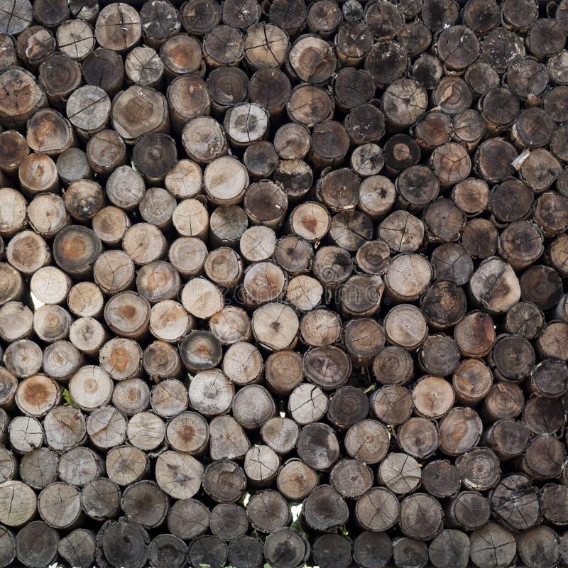 Куча отрезанного деревянного журнала пня стоковая фотография