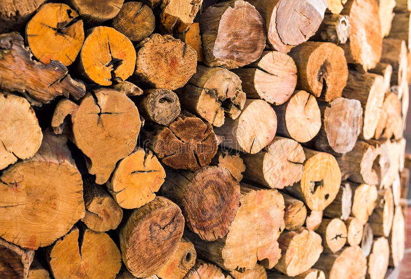 Куча отрезанной деревянной текстуры журнала пня используемой как предпосылка стоковое изображение rf