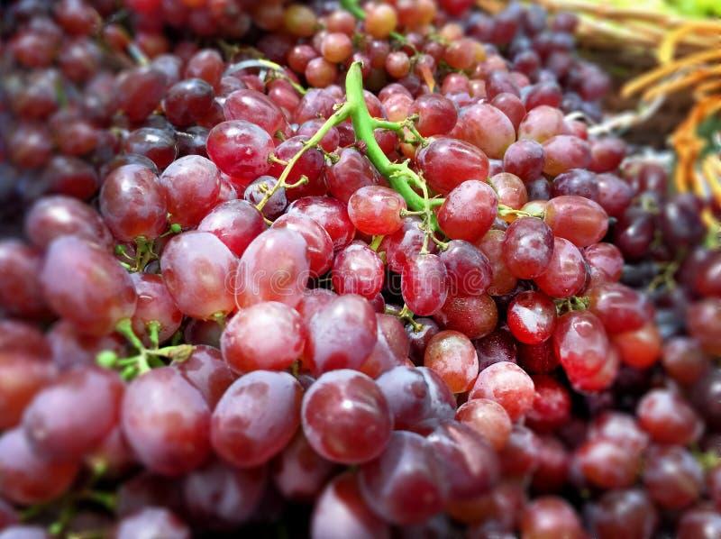 Куча плодоовощей красной виноградины стоковые фото