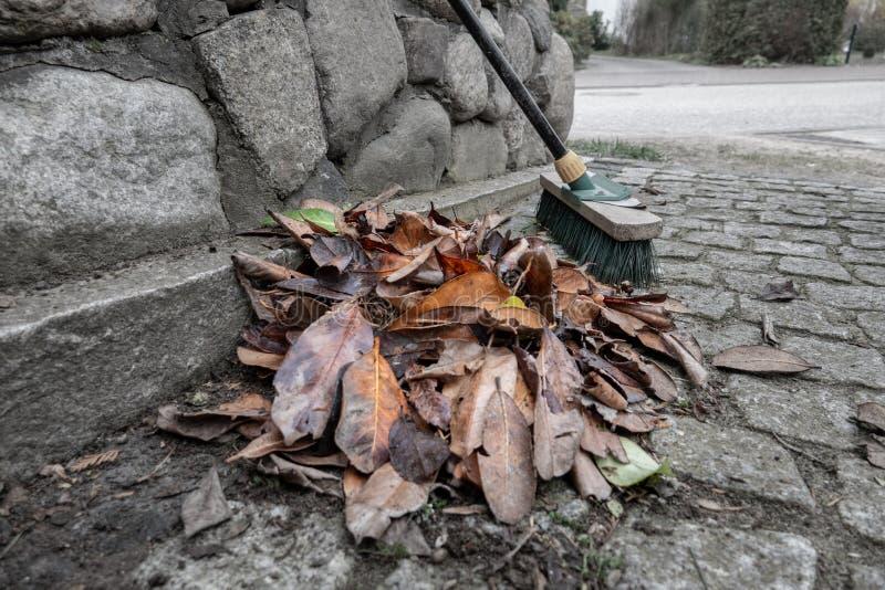 Куча подметенных листьев стоковое изображение rf
