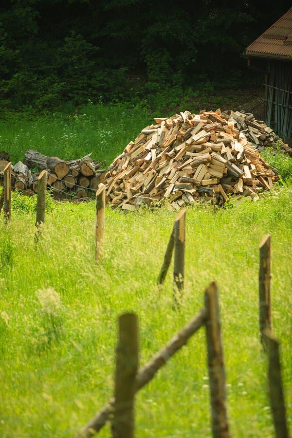 Куча древесины за деревянной загородкой на зеленой траве стоковая фотография rf